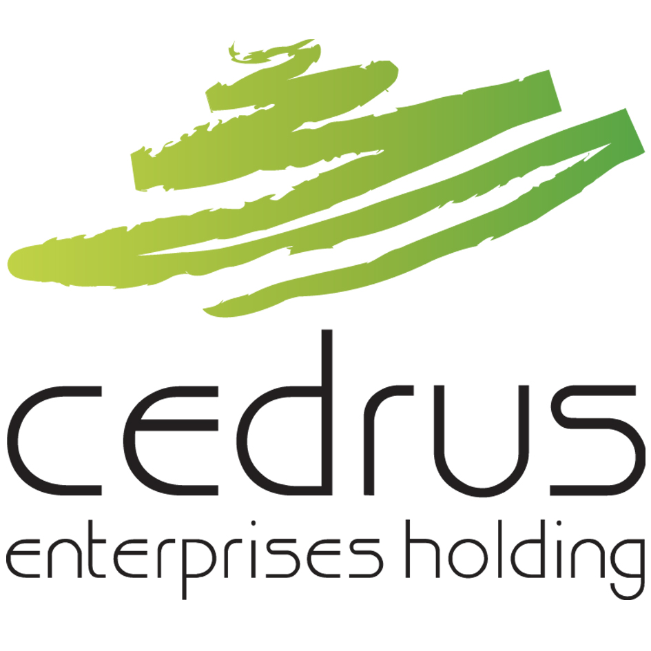 Cedrus Enterprises Holding expands its smart energy portfolio with a new acquisition in partnership with S&T AG