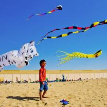 Kite Fiesta 2018 Hosted by Dubai Outlet Mall Takes Flight
